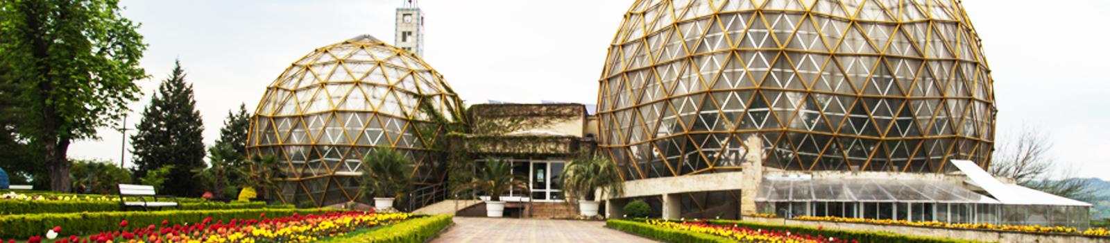"""Der botanische Garten """"Vasile Fati"""" in Jibou"""